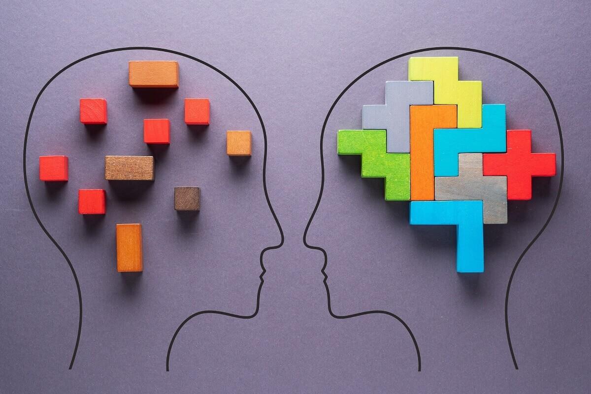 neurociencia de la conducta